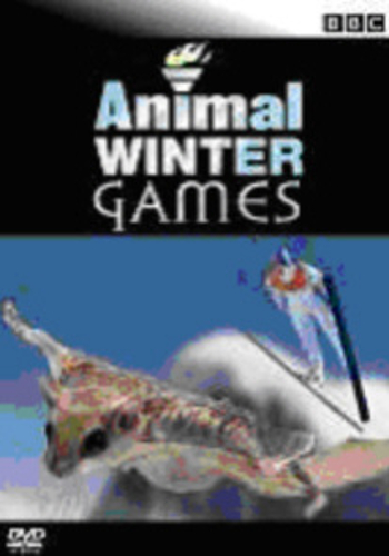 BBC: Animal winter games